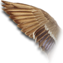 Wing Duck icon